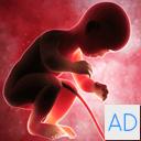 Baby Run 4D - Run 1 2 3